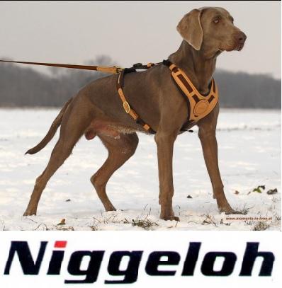 Niggeloh - za psa