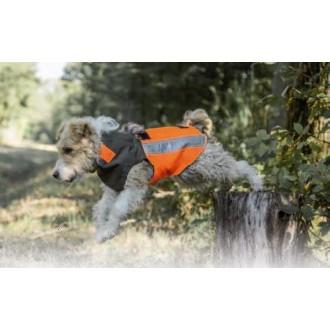 DOG Angel - zaščitna obleka za psa